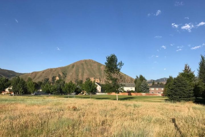 grassy field, trees, and mountains at 931 buckhorn drive